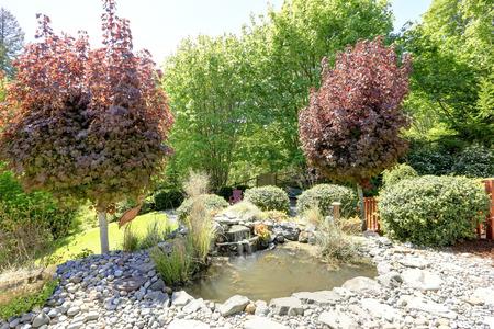 남자와 아름답게 디자인 된 뒷마당은 작은 연못과 장식 폭포를 만들었습니다.