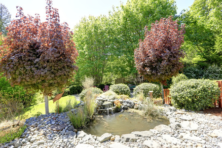 back yard pond: Beautifully designed backyard with man made small pond and decorative waterfall  Stock Photo