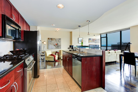 Modern apartment interior  Black and burgundy kitchen, bright living room with glass wall photo