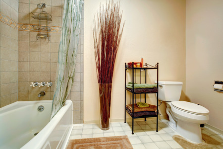 bathroom wall: Bathroom with white toilet and bath tub, tile trim wall  Room decorated with dry branches and iron shelves