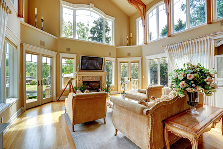 Impressive high ceiling living room with tv, fireplace and antique furniture photo