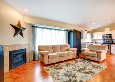 Furnished living room with fireplace, hardwood floor and rug   Furnished with couch and love seat  Wall decoted with a big star  View of kitchen area photo