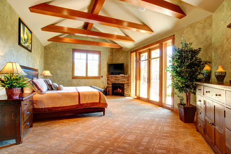 vaulted ceiling: Beautiful bedroom of light green tones with ceiling beams and stone background fireplace  Tropical theme complete with decorative tree in a pot