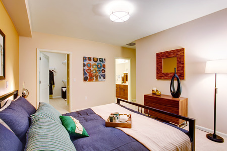 walk in closet: Modern master bedroom with walk-in closet and bathroom  View of elegant bed with purple bedding