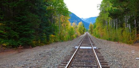 forest railroad: Empty Railroad in the fall forest with mountains  Washington state