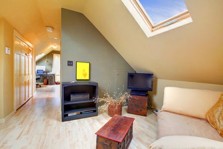 Velux furnished room with white sofa and wooden coffee table photo