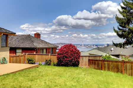 Summer day view from the back yard of Seattle and Space Niddle. photo