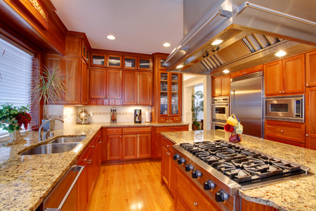Luxuriant kitchen interior. View of storage combination, kitchen island and appliances 版權商用圖片