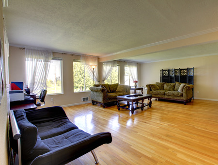 classic living room: Spacious living room with hardwood floor, antique green sofas, woode coffee table and office area