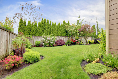 Fenced backyard. View of lawn and  blooming flower beds