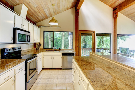 vaulted: White kitchen room with steel appliances and high vaulted ceiling. Kitchen room has walkout deck