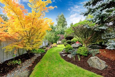 다채로운 나무와 장식 트림, 숲과 바위의 아름다운 뒤뜰 조경 디자인보기 스톡 콘텐츠