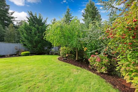 緑の芝生、木、開花茂みと裏庭の風景