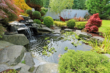 Tropical landscape design on backyard. View of small pond, trimmed bushes and small waterfall Фото со стока