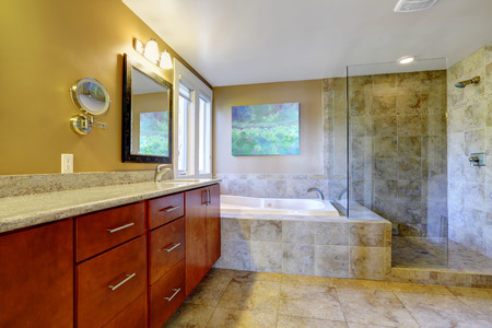 screened: Modern bathroom interior with bathroom vanity cabinet, bath tub and glass screened shower Stock Photo