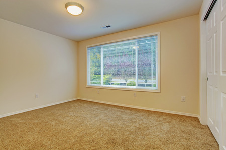 Soft tones emtpy bedroom with carpet floor and closet