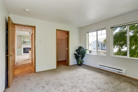 White Empty Room With Brown Carpet Floor. Room Decorated With Palm Tree  Photo