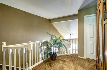 upstairs: Olive tone upstairs deck with white balustrade and green palm in wicker pot Stock Photo