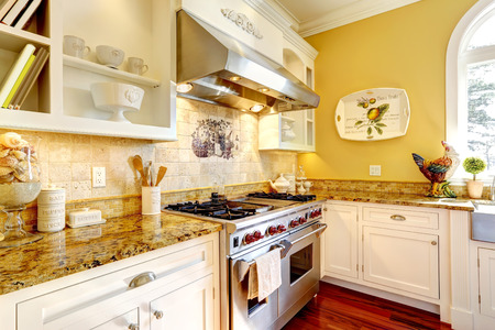 splash back: Kitchen cabinets with steel stove and granite tops. Luxury house interior