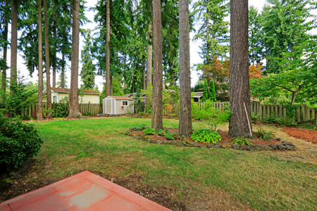 Countryside house backyard with small shed and trees photo