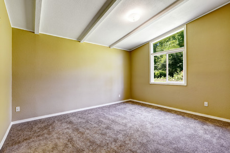 vaulted ceiling: Empty room with soft brown   carpet floor and vaulted ceiling.
