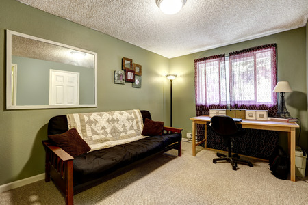 furnished: Green office room. Furnished with sofa and desk