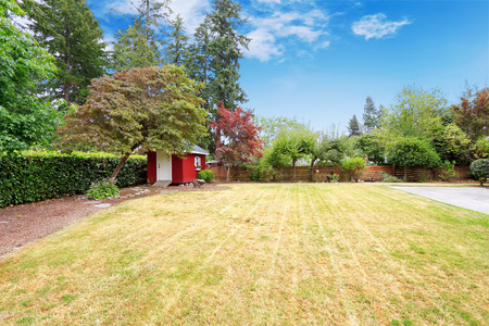 Fenced backyard with large lawn and small red shed