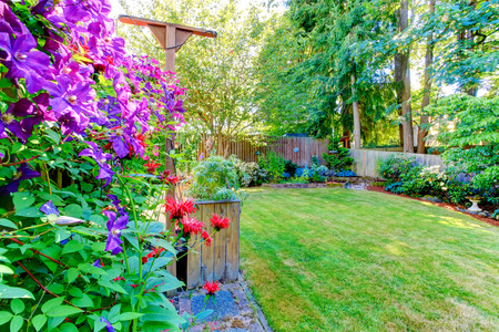 fenced: Fenced backyard with lawn and vivid flowers