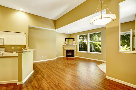 open floor plan: Empty apartment with open floor plan. Living room with hardwood floor and fireplace in the corner Stock Photo