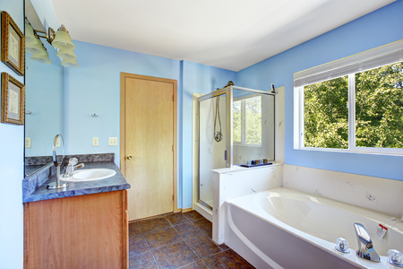 screened: Bathroom interior with blue walls and rust tile floor. White bath tub, screened shower and cabinet with mirror Stock Photo