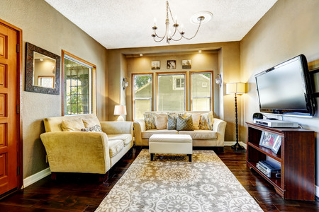 family  room: Simple living room interior. Comfortable couches and tv Stock Photo