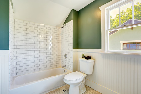 white trim: White bathroom interior with green walls with siding and tile wall trim