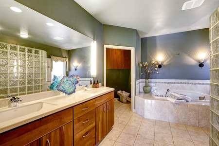 vetrocemento ampio bagno con pareti verde scuro e beige pavimento di piastrelle armadietto di
