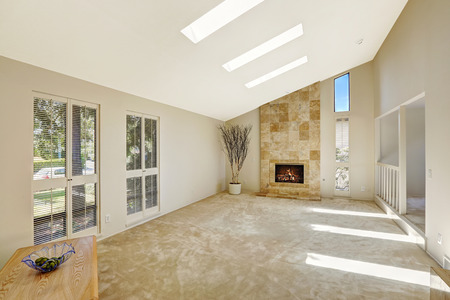 skylights: Floor plan in empty house. Beautiful living room with fireplace, vaulted ceiling and skylights