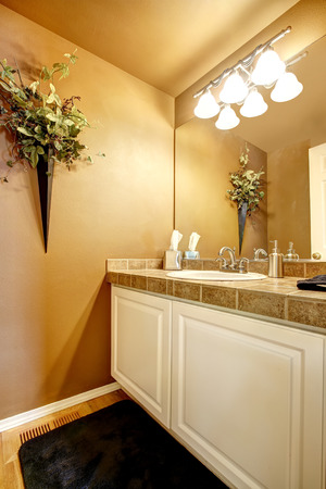 trim wall: Bathroom interior. View of white vanity cabinet with tile top trim. Wall decorated with dry buquet Stock Photo