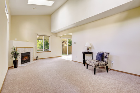 ceiling: Bright empty room with high vaulted ceiling and skylight. Room has fireplace and exit to backyard area