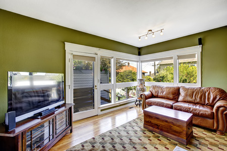 Home interior in green color with brown leather couch and tv photo