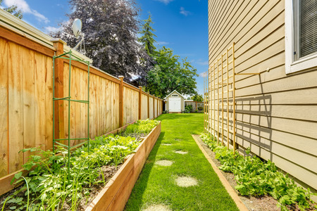 fenced: Fenced backyard with garden bed and green lawn