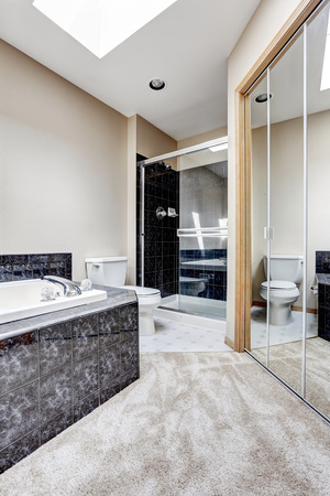 white trim: Bright bathroom interior with carpet floor, white bath tub with black granite tile trim. Shower with glass door and large mirror door