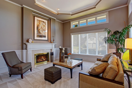 Cozy Living Room With Fireplace luxury cozy living room with fireplace, brown couch and palm