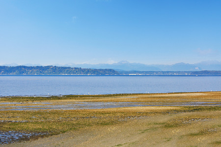 puget: Scenic private beach with Puget Sound view and mountains on skyline,  Burien, WA