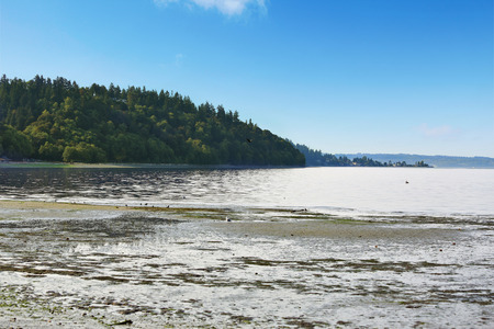 puget: Scenic private beach with Puget Sound view and green hill,   Burien, WA Stock Photo