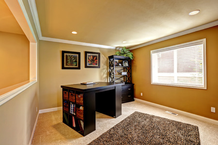 office cabinet: Comfortable office area with dark brown desk and cabinet. Soft brown rug on carpet floor