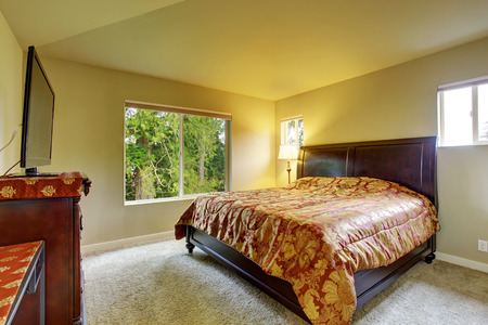 Master bedroom with carpet, windows, and king sized bed. photo