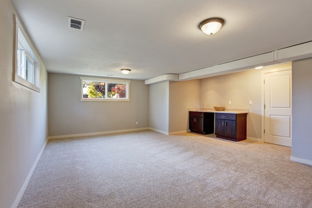 New living room with carpet, fire place, and cabinets.