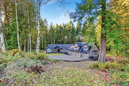 new entry: Beautiful large house with driveway, and garage.