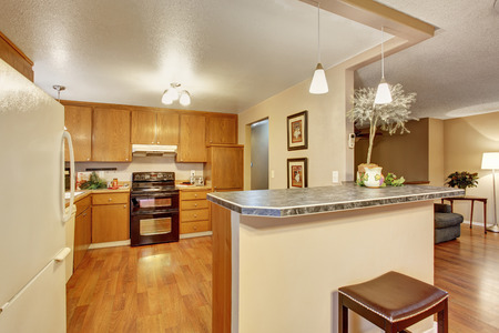 kitchen cabinets: Traditional kitchen with hardwood floor, cabinets, and bar.