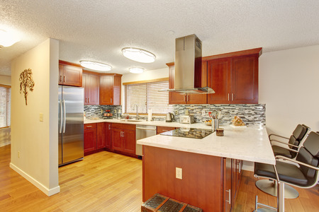 furnished apartments: well kept kitchen with hardwood floor and great lighting.