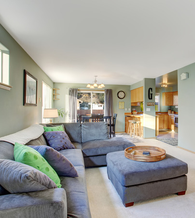 classic living room: Classic living room with carpet, grey furniture, and cool colored decor. Stock Photo