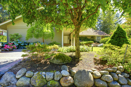 large tree: Beautiful front garden with stones and bushes. Landscape design.